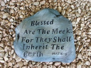 blessed-are-the-meek